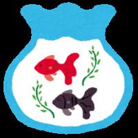 kingyobachi
